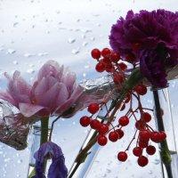 Цветочки в пузырёчках. :: Алексей Цветков