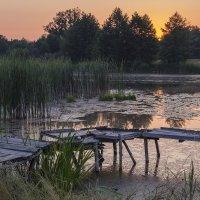 В предвкушении рыбалки :: Сергей Корнев