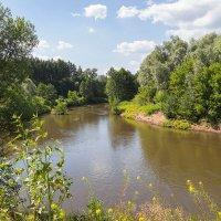 Река Боровка, Бузулукский бор :: Олег Манаенков