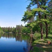 Встречают вновь речные берега... :: Лесо-Вед (Баранов)