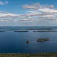 Финляндия.Национальный парк Коли. :: Виктор Харьковский