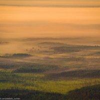 Над туманным лесом... :: Алексей Сычёв
