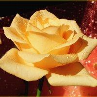 Акварельная роза :: Лидия (naum.lidiya)