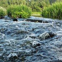 Река :: Шура Еремеева