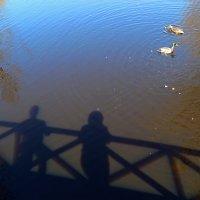 На мостике. :: Нина Бурченкова.