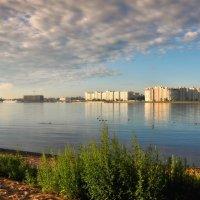 Вид на В.О. :: Алексей Астафьев
