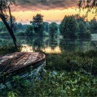 Июльским вечером у озера. :: Константин Ушмаев