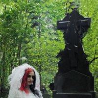 650 :: Михаил Менделеев