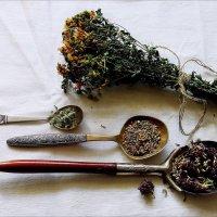 Любимый  чай  из  трав. :: Валерия  Полещикова