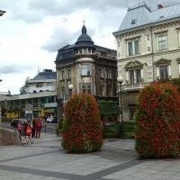 Bielsko-Biała :: Nina sofronova