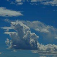облака сегодня красивые :: Таня Фиалка