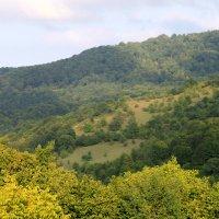 Кавказские горы.Утро. :: Алла ZALLA