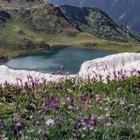Абхазия , долина семи озёр . :: Александр Криулин