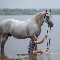 Купание коня :: Елена Логачева