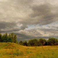 луг перед дождём :: Александр Прокудин