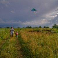 Прогулка с воздушным змеем :: Андрей Дворников