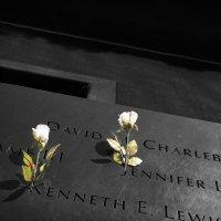 Мемориал 9/11 :: Олег Чемоданов