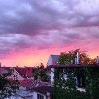 На закате перед дождем :: Ольга Богачёва