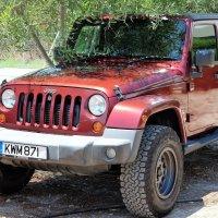 Jeep :: Dmitry i Mary S