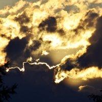 Таежное небо :: Виктория Большагина