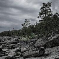 Каменистый берег острова Кий :: Павел Харлин
