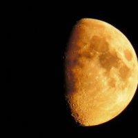 Ах,что за Луна (2) :: Alexey YakovLev