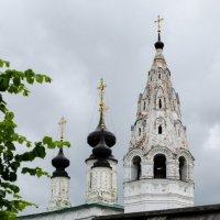 Александровский мужской монастырь в Суздале :: Мария Беспалова