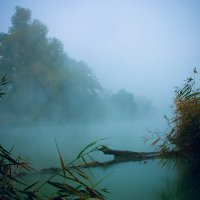 Туман в городе моем :: Margo Gordeeva