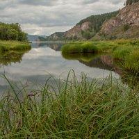 Залив реки :: Сергей Герасимов