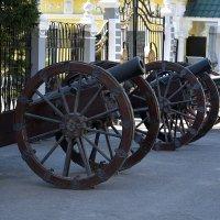 Старые пушки у дворца... :: Дмитрий Петренко