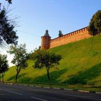 Кремлевские стены :: Наталья Сазонова