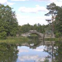 Горбатый мост. :: Senior Веселков Петр