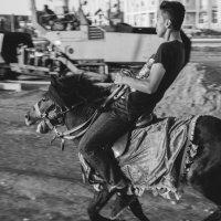 На коне :: Dmitriy Predybailo