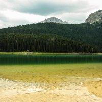 Озеро Черное :: Оксана Кирпичева