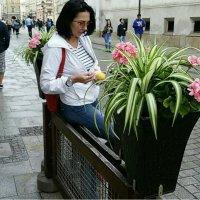В Кракове сейчас :: Galina Belugina