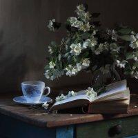 Чай с жасмином. :: Vladimir Shapoval