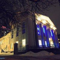 Центральная библиотека города :: Сашко Губаревич