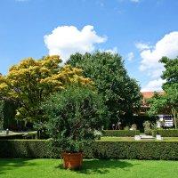 В Ботаническом саду Аугсбурга... :: Galina Dzubina