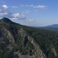 Гора и ветка :: Георгий Морозов