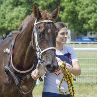 Лошадь и женщина :: Олег Брусенцев