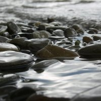 мокрые камушки :: Богдан Вовк