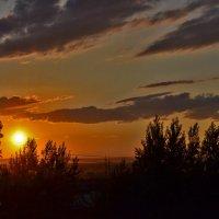 Лето...закат солнца :: galina tihonova