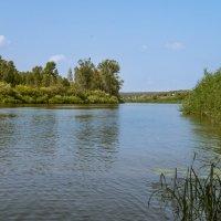 летний полдень на реке :: cfysx
