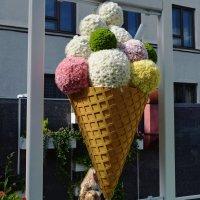 Мороженое из живых цветов. :: Татьяна Помогалова