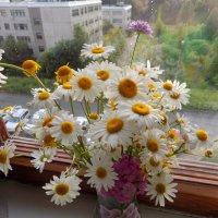 Маленькие  радости лета :: Алена