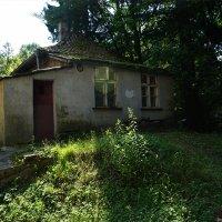 Светлогорск - Раушен. Калининградская область. :: Murat Bukaev