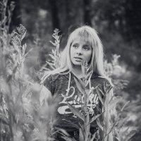 ... :: Максим Кагало
