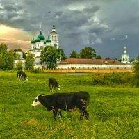 Толгский женский монастырь :: Владимир Голиков