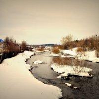 речка Турья в Карпинске. :: Лариса Красноперова