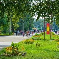Аллея в парке. :: юрий Амосов